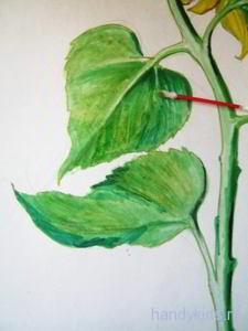 Раскрасим листья подсолнуха