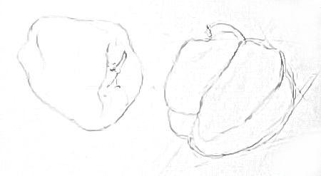 Перец -рисунок карандашом