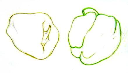 Рисуем болгарские перцы