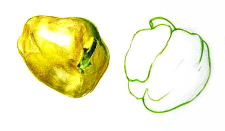 Рисуем перцы акварельными красками