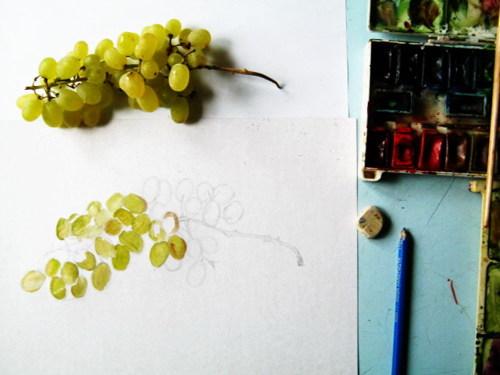 Как нарисовать виноград с натуры
