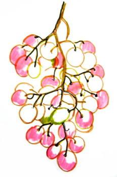 Раскрасим ягоды поэтапно