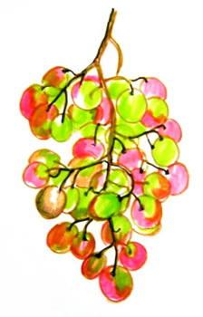 Раскрашиваем гроздь фломастерами