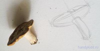 Как рисовать грибы