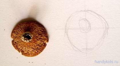 Рисование грибов