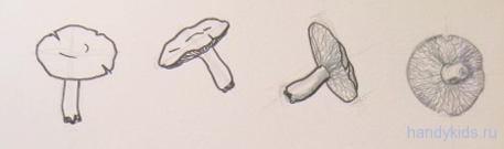 Рисунки грибов