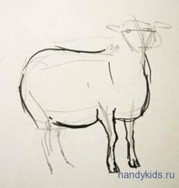 Рисуем поэтапно овечку