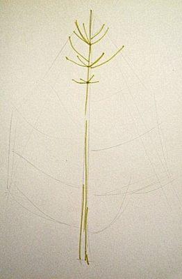 Урок рисования ёлочки