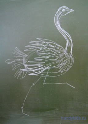 Нарисуем страуса