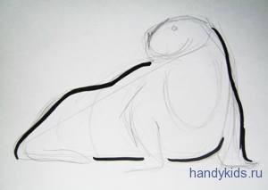 Как рисовать моржа