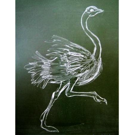Страус рисунок