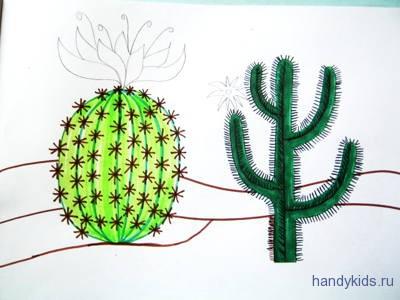 раскраска Цветы Кактуса