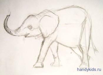 Как нарисовать слонёнка поэтапно
