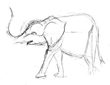 Рисуем слонёнка