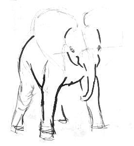 Нарисуем индийского слонёнка поэтапно