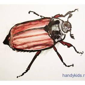 Рисунок майский жук -13