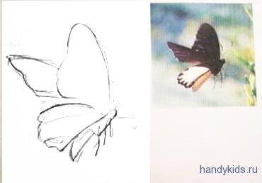 Урок рисования бабочки