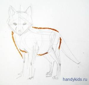 Как нарисовать лисёнка поэтапно