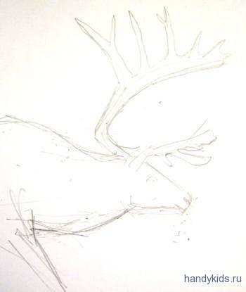 Нарисуем рога северного оленя