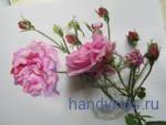 Рисунок розы с натуры
