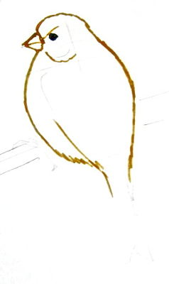 Как поэтапно нарисовать  канарейку