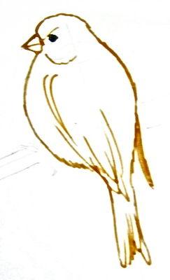Урок рисования канарейки -3