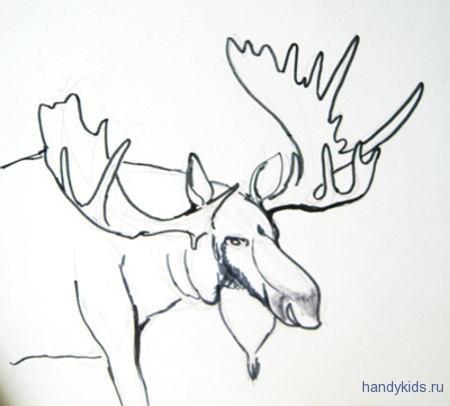 Раскраска голова лося с рогами