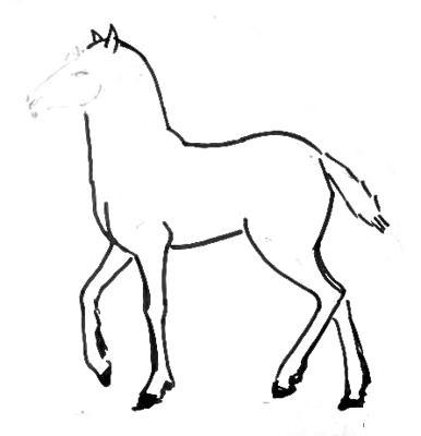 Рисуем жеребёнка -3