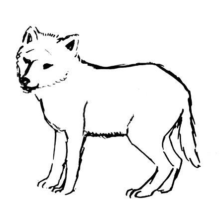 Раскраска Волчонок