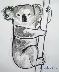 Рисунок коала