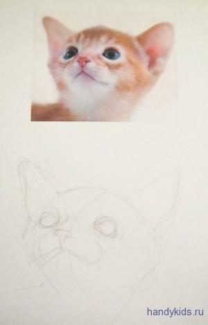 Нарисуем мордочку котёнка
