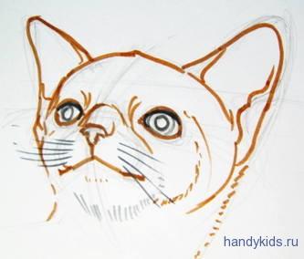 Как рисовать голову котёнка.