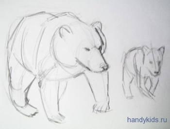 Рисунок медведя карандашом
