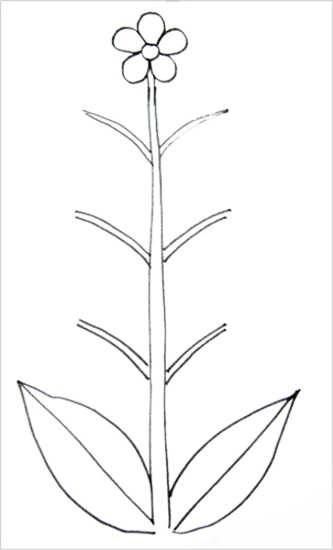 Раскраска-обводилка Цветок