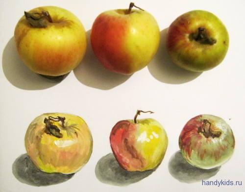 Рисунок с натуры - яблоки