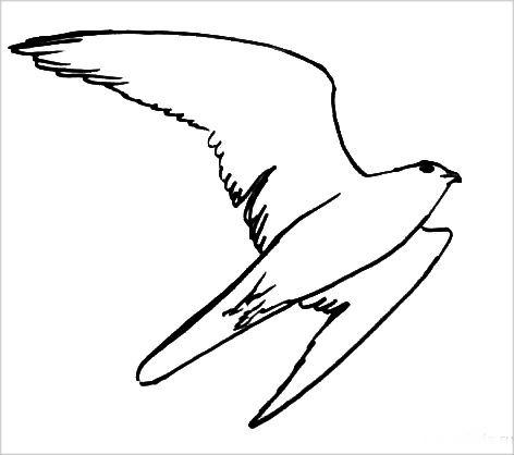 Раскраска -сокол летит