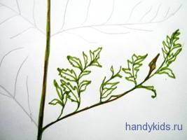 Нарисуем лист папоротника