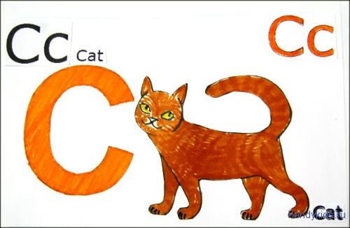 C-cats 011