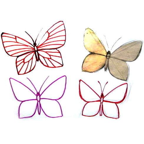 Рисунки бабочек