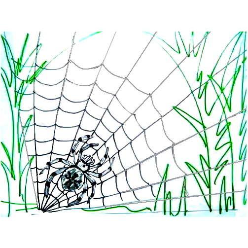 Рисунок паутина и паук