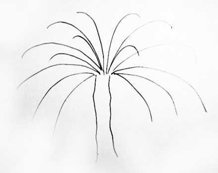 Поэтапный рисунок пальмы