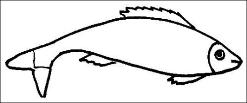 Fish coloring sheet