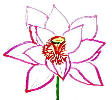 Рисунок -цветок лотоса.