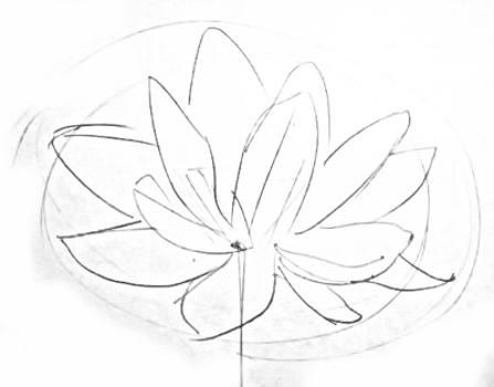Цветок лотоса-рисунок карандашом.