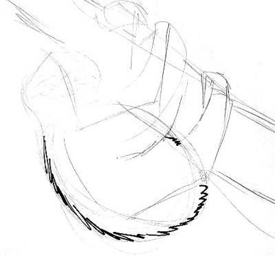 Рисуем туловище ленивца