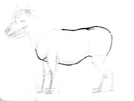 Рисуем пони поэтапно