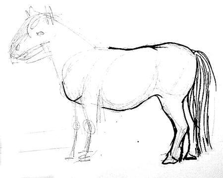 Этап рисования пони