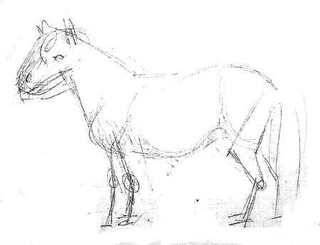 Пони - эскиз карандашом