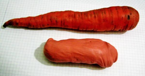 Подготовка к лепке морковки