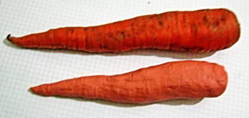 Морковка из пластилина.